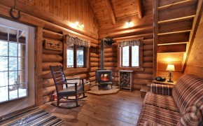 living room with woodstove