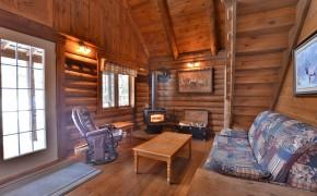 salon avec poêle au bois